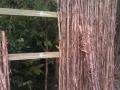 mako-fencing-ti-tree